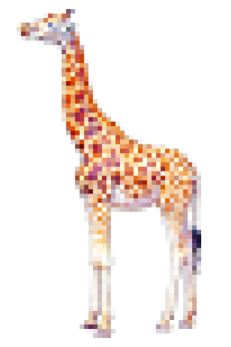 giraffe72